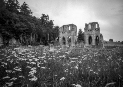 Roche Abbey, Rotherham, South Yorkshire