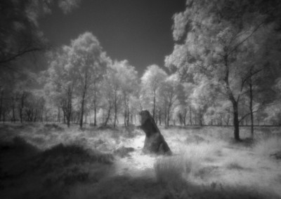 Gardoms Standing Stone, Peak District, Infra Red Pinhole