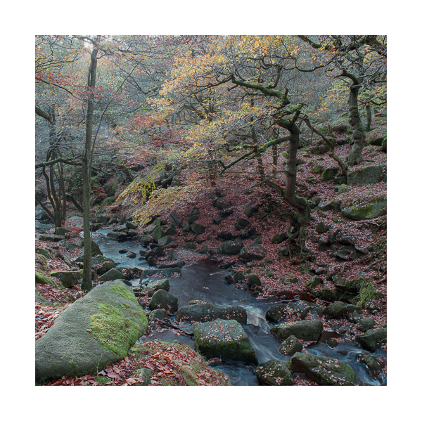 The Truth of Colour at Padley Gorge