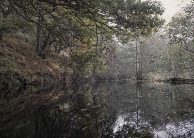 Mill Pond, Peak District