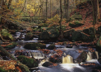 Padley Gorge Bridge in Autumn, Peak District photography by Alastair Ross