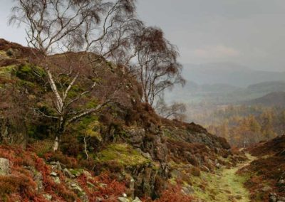 Back of Holme Fell, Lake DIstrict, Cumbria, Lake District, Cumbria, lake district national park, lake district photography, lake district landscape photography